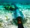 Cabos de rede submarino: veja algumas curiosidades interessantes